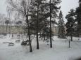 いろいろ(921)久しぶりに雪
