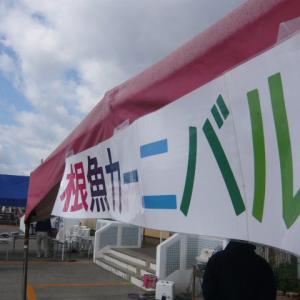【完】2019 平磯海づり公園根魚カーニバル