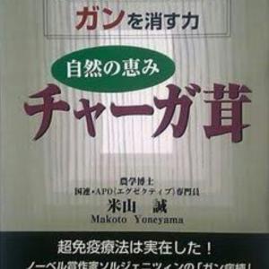 幻のキノコ「チャーガ」