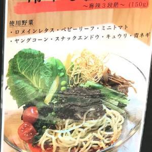 再訪【三軒茶屋】新登場冷やし担々麺食べて来た【sirusi】【グルメ】特製魚介そば