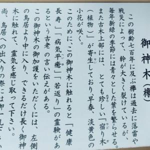 【蒲田】アンチエイジング・病気回復に効き目あり!?なパワースポット新田神社【でもキスマイの祈願が多かった。。】
