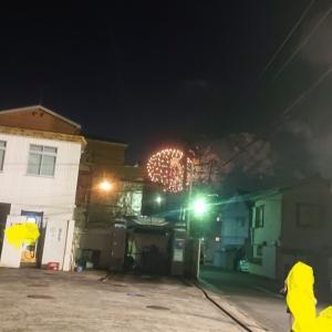 江戸川の花火が上がっていてテンションが上がった!!