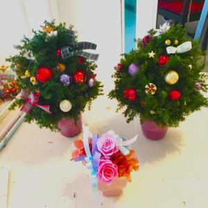 今年最後のクリスマスツリーレッスンは・・・