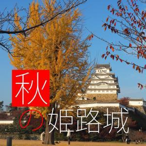 秋の姫路城探訪2020