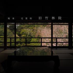 春の滋賀京都旅①比叡山の東の玄関、坂本探訪