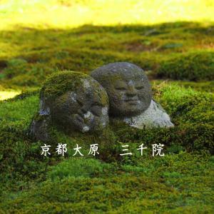春の滋賀京都旅④大原苔生したお寺巡り