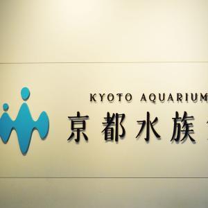 春の滋賀京都旅⑤京都水族館を満喫