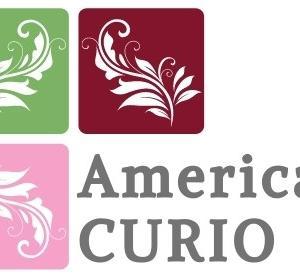 オンライン・セレクトショップ「American CURIO」オープン!