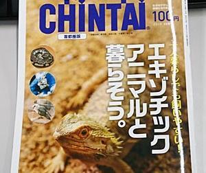 【今日の本】CHINTAI首都圏版 2019年12月号