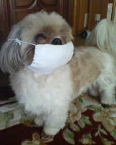マスク大好き