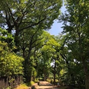 川崎市にある動物公園と川崎デルタ