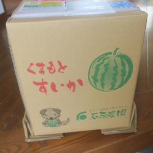 熊本から、重さ10キロもの大型スイカが届く!