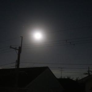満月の夜。きっと、どこにいても、思い出す。