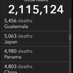 我が国の中共ウイルスによる死者5千人越え!致死率の高い変異種上陸!親中派の罪!