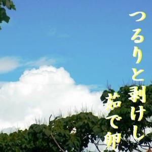 俳句生活『よ句もわる句も』 兼題【雲の峰】