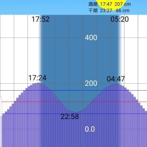 【京浜運河遠征2019】ツ抜けまでもう一歩
