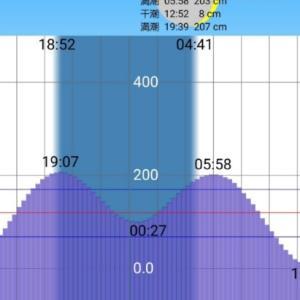【荒川上流シーバス2020】NewWeapon
