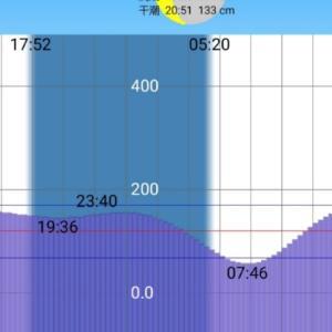 【湾奥遠征→荒川上流シーバス2020】まだ秋には遠いか
