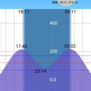 【京浜運河遠征2019】風の強い予報だったんで期待したんだけど・・・