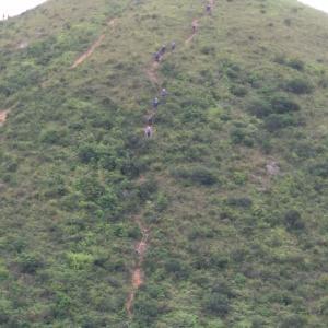 悪天候が続く香港で登山する人たち、何がそうさせるのか不思議な人々。今日も救援隊が出動。登山は安全を確保した上で楽しんでもらいたいと切に願う。