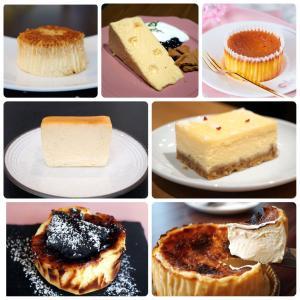 御礼!マツコの知らないチーズケーキの世界に出演