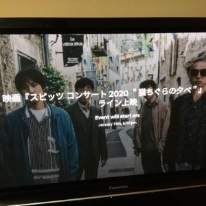 猫ちぐらの夕べ (2回目)
