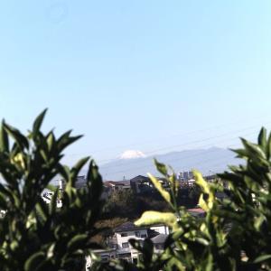 富士山の眺望キレイでした