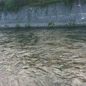 最後の渓流