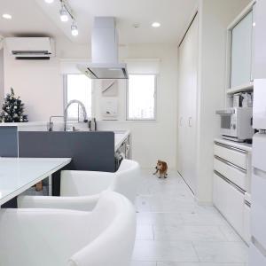 時短になる!キッチン丸洗い掃除に使えるオススメアイテム2選