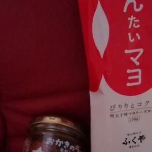 【ヴィレバンの優待券、1,000円分を使用(2019/08)】コンボでタダ!!