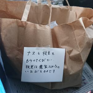 今朝も野菜をもらいました            \(^^)/(今朝の新聞配達)