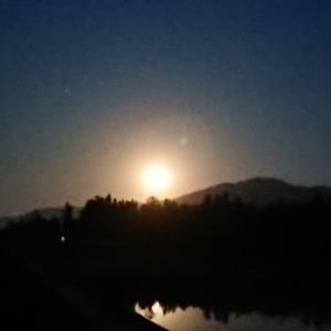 月明かり(今朝の新聞配達)