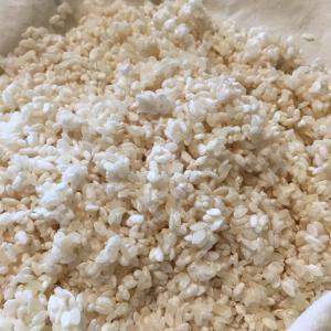 ゆるゆる米麹づくり