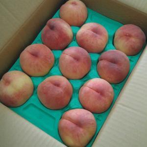 桃のおいしい季節
