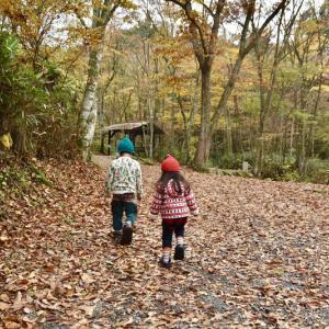 道志村で紅葉狩りキャンプ ① 〜 山伏オートキャンプ場 〜
