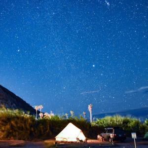 こたつでぬくぬく冬の海キャンプは景色が最高!② 〜白浜フラワーパーク〜