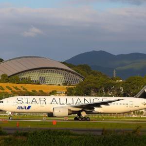 夕刻のスタアラ離陸。