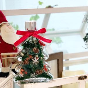 クリスマスツリー瓶入荷