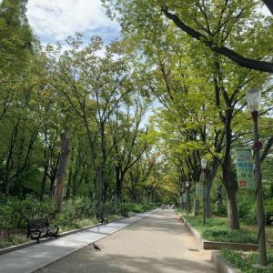 街あそび・靭(うつぼ)公園から京町堀へ @大阪・西区