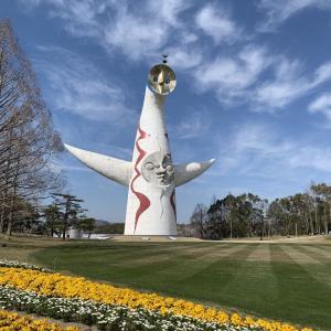 今日の万博記念公園と桜