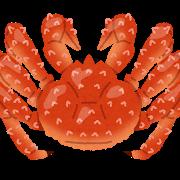 【超特大・極太5Lサイズ】本たらば蟹ボイル脚1㎏~北海道稚内市【ふるさと納税】