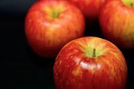 ふじのりんごのクリームパイ~青森県藤崎町【ふるさと納税】