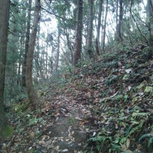 富神山散歩