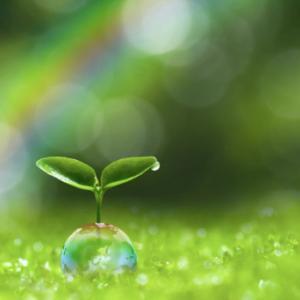 2021年絶対に幸せになる!未来を作るバイオリズム講座