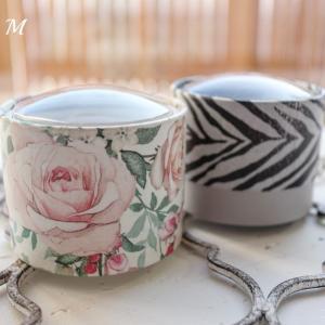 冬薔薇のギフトボックス