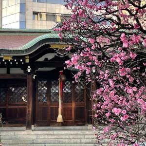 運転免許更新と三宮神社