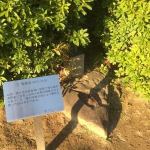 浅野城 〜馬蹄石〜