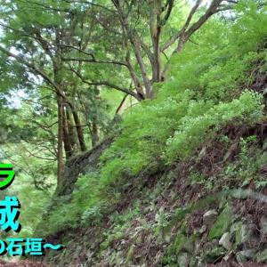 [YouTube]【城カメラ】《高取城》2019 〜二の丸の石垣〜