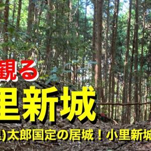 【城を観る】《小里新城》2020 〜尾里(小里)太郎国定の居城!小里新城跡を観る〜
