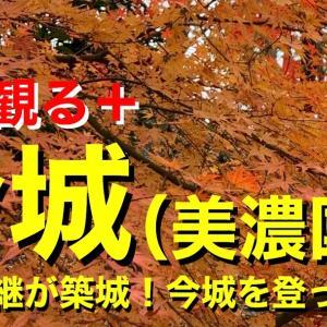 【城を観る+】《今城(美濃国)》2019 〜小池家継が築城!今城を登って観る〜